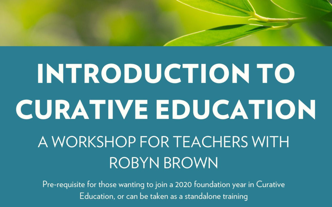 Introduction to Curative Education